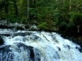 Dunkeld Hermitage Falls Video