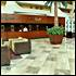 United Arab Emirates Hotel Deals