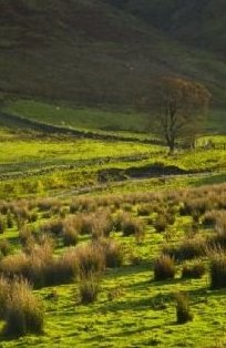 Scottish Borders Liddesdale Photograph