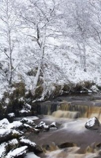 Scottish Borders Liddesdale Winter Photograph