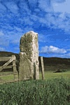Tingwall Standing Stone